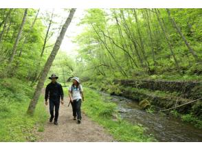 軽井沢を歩く【峰の茶屋~龍返しの滝コース】の画像
