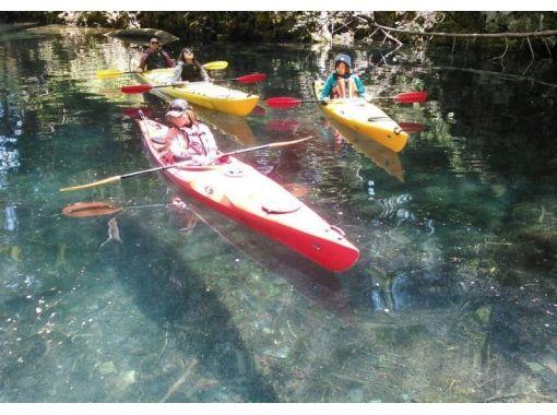 【青森・十和田湖】始めての方歓迎!世界最大の二重カルデラ湖の特別保護区を巡るカヤックツアー