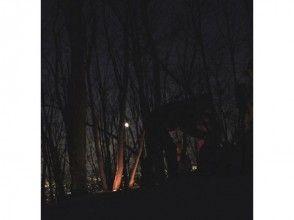 [Snowshoe ในฮอกไกโดซัปโปโร] ภาพของคืนเดินป่าประสบการณ์ป่าคืน (คู่มือมาพร้อมกับ)