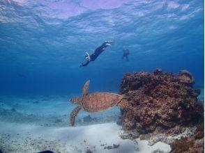 【沖縄・宮古島】いろいろな魚達と一緒に泳げる ♪ ビーチシュノーケリング<半日コース>の画像
