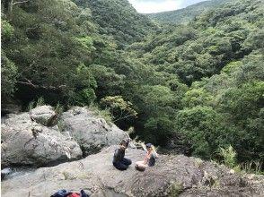 【鹿児島県・奄美大島】◇貸切・無料送迎付◇マングローブカヌーと絶景!秘境の滝