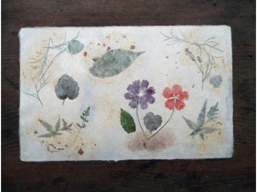 【高知県・梼原町】草花すきこみ❀伝統の紙漉き体験