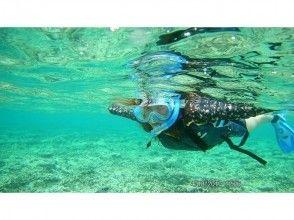 [沖繩石垣島]最受歡迎!藍洞及浮潛之旅!有吸引力的冷凝1小時球場的圖像