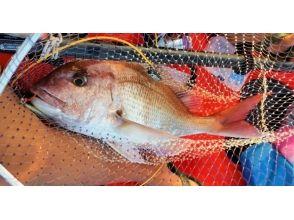 【高知・鵜来島】磯釣りが有名な鵜来島でボートフィッシング&宿泊体験!の画像