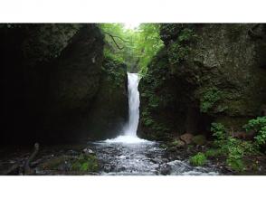 【長野・軽井沢】軽井沢の森で森林浴 ♪ 信濃路遊歩道ダウントレッキング(約3時間)の画像