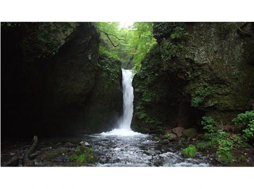【長野・軽井沢】軽井沢の2名瀑・白糸の滝&竜返しの滝に立ち寄り! 信濃路ダウントレッキング(約3時間)