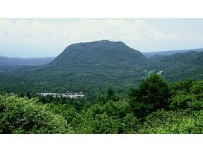 【長野・軽井沢】軽井沢のテーブルマウンテン離山 ♪ 山野草観察トレッキングツアー(約3時間)の画像