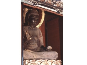 "Opened once a year! Kokubunji ""Yakushi Buddha statue"" public open & national treasures · tour of the Tathagata image of important cultural asset [10866]"