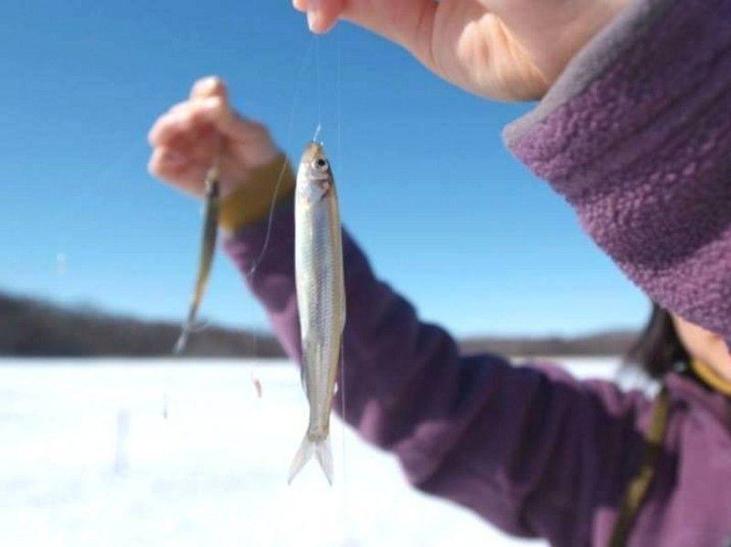 「網走湖のワカサギ釣り」的圖片搜尋結果