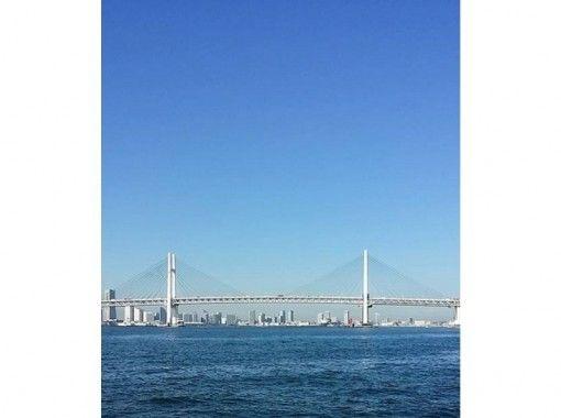 【千葉・浦安出港】屋形船で遊覧航行プラン(35名~・2時間周遊)