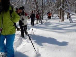 [Hokkaido/Abashiri] Ice Falls Snow Adventure! Snowshoes trekking of drift ice and ice ridge-with guide