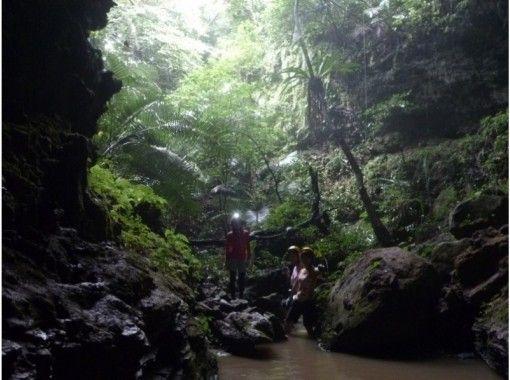 【沖縄・西表島】マングローブの川カヌー体験ピナイサーラの滝つぼ&ケイビング1日、写真データプレゼント