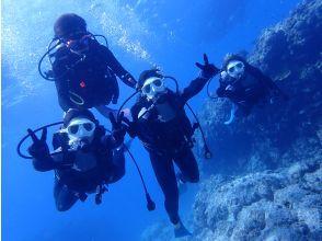 【水中写真・動画無料プレゼント!】慶良間半日体験ダイビング(2ダイブ)コース