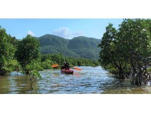 〔沖縄・西表島〕大自然を1日満喫 西表島カヤック&エコツアー ジャングルアドベンチャー 昼食付の画像