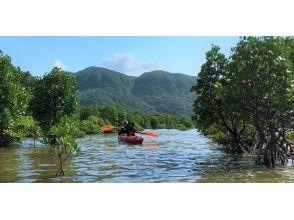 〔沖縄・西表島〕大自然を満喫する半日ツアー 西表島カヤック&エコツアー ジャングルアドベンチャーの画像
