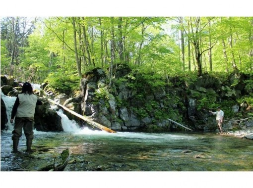 "[Hokkaido ・ Tokachigawa] I can enjoy it from primary school children! Mountain stream fishing experience in the wilderness ""half-day course""の紹介画像"