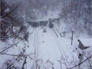 【北海道・黒松内町】冬の探検ツアーの画像