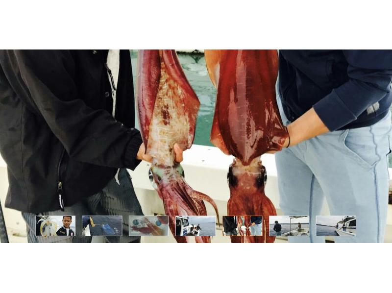 【沖縄・本島中部】イカ釣りコースの紹介画像