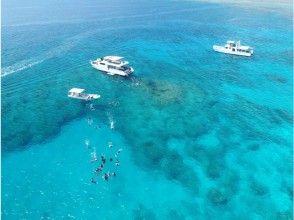 【沖縄・慶良間】初心者OK!大珊瑚礁シュノーケリング(餌付け体験付)&美ら海ボート体験ダイビング