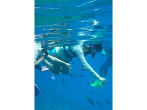 【沖縄・慶良間】大珊瑚礁シュノーケリングプラン(餌付け体験付き)&美ら海ボート体験ダイビングの画像