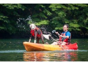 [Tochigi, Nasu] plate chamber dam lake kayaking experience tour (single kayak: Nasu area)