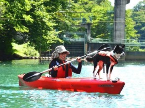 [Tochigi, Nasu] plate chamber dam lake kayaking experience tour: image of (single kayak Nasu area)