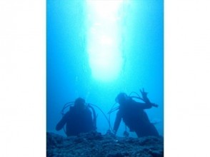 【Okinawa · Blue Cave】 Experience Diving Convenient transport with plans! No need to rent a car!