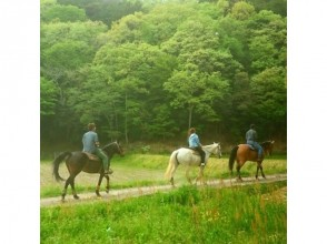 【兵庫・篠山】白馬で乗馬体験+ミニ外乗の画像