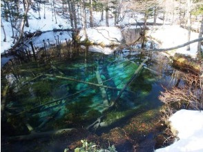 Go snowshoe! ! Picture of God's child pond ☆ 【Free pick up transfer】 picture