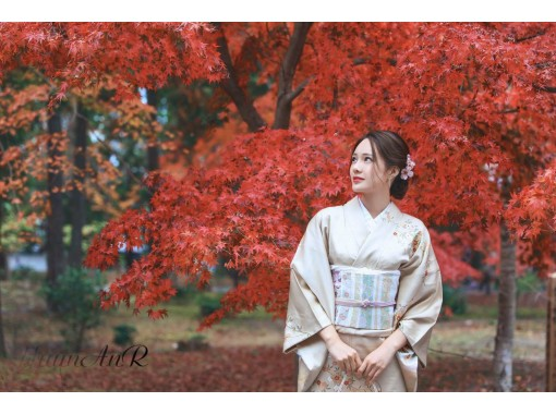 前往旅遊地區可使用的使用優惠券[京都/ Kiyomizudera]和服租賃(帶免費口罩和髮飾租賃日元讓我們享受和服の紹介画像