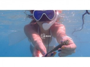 【Kagoshima · Amami Oshima】 Skin diving tour Half day or day image