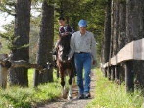 【北海道・富良野】曳き馬:シラカバコース OR ピリカコースの画像
