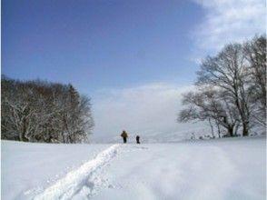 【北海道・函館】静寂と星夜景を見に行こう!ナイトスノーシューツアーの画像