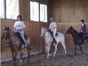 【北海道・帯広】乗馬体験レッスンコースの画像