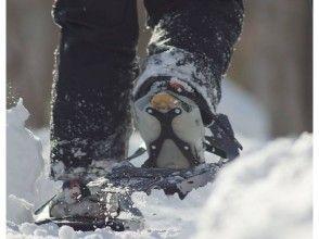【北海道・札幌】北国の森ノルディックウォーキングツアー、積雪期はスノーシューで楽しめます。の画像