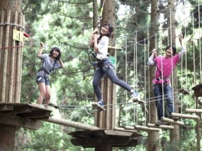[Hyogo / Himeji, west Harima] access from Takeda castle excellent! Forest Adventure (Adventure course)