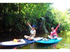 [沖繩西表島] 1天紅樹林SUP克魯斯和叢林瀑布徒步旅行(含飲料)