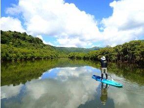 【西表島】【1日】話題のSUPでジュラシックパークを大冒険!マングローブSUPと滝トレッキング【写真データ無料】(3時おやつ・ドリンク付き)
