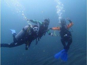 【神奈川・小田原/西湘】始めての方でも安心!体験ダイビングで海の中をのぞいてみよう!『地域共通クーポン利用可能プラン』