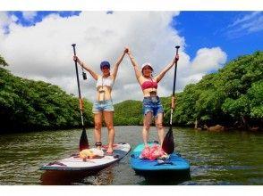 [沖繩西表島]半天紅樹林SUP巡航(含飲料)