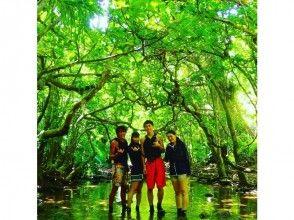 【沖縄・西表島】【半日ツアー】クーラの滝トレッキングの画像