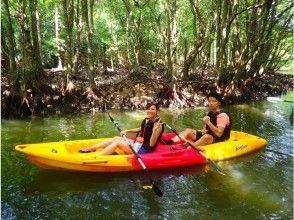 【沖縄・西表島】【半日2ツアー!】選べるクーラの滝カヌーorSUP&由布島の画像