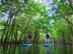 【沖縄・西表島】【1日3ツアー!】選べるクーラの滝SUP&キャニオニング&バラス島シュノーケリングの画像