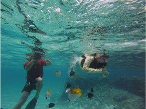 [Kagoshima ・ Yoron Island] Even if you are a beginner, you can feel safe ☆ Snorkel tour
