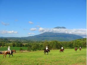 【北海道・ニセコで乗馬】ホーストレッキング(60分)の画像