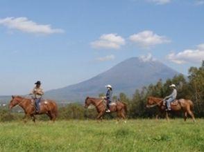 【北海道・ニセコで乗馬】経験者限定!ホーストレッキング(180分)の画像