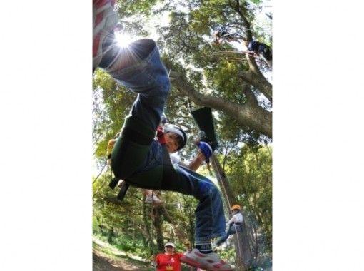樹上で遊ぼ!☆Letsツリークライミング☆