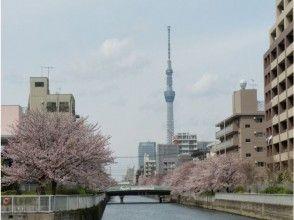 [Nihonbashi boarding] Tokyo Sky Tree & 5 Grand Canal Cherry Corridor Cruise 【11711】