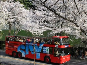 【Hamamatsucho Collection】 Sky bus Sakura's Imperial Palace Panorama Bus Tour & Meguro River Cherry Blossom Crossroad Cruise 【11701】