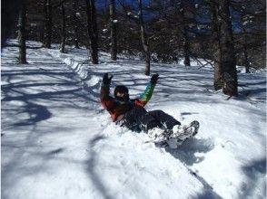 【軽井沢・長野・群馬】雪山アドベンチャー体験『スノースライディング』そり遊び スノーシュー 高峰高原の画像